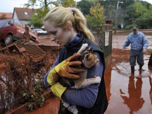 Joven rescatando a un gato de la inundación de lodo tóxico.