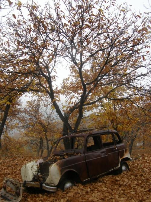 Hasta la chatarra se impregna del olor a otoño del bosque...